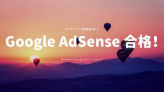 サイト立ち上げ二週間で念願のGoogle Adsenseに受かった!